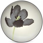 Noritake Colorwave Graphite Accent/Luncheon Plate-Floral, 8 1/4″