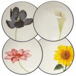 Noritake Colorwave Graphite Plates-Floral Appetizer, Set of 4, 6 1/4″