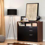Brown Walnut and Pure Black Storage Unit with File Drawer – Tasko