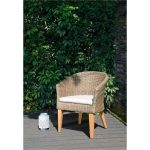 Donny Osmond Outdoor Patio Dining Chair – Monroe