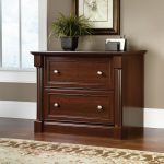 Palladia Select Cherry Lateral File