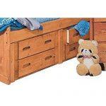 Palomino Cinnamon Rustic 4-Drawer Under-Bed Dresser