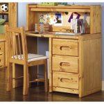 Palomino Cinnamon Rustic Desk & Chair